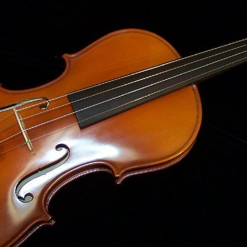 Victor Delgado Violin Model 075 (VL075)